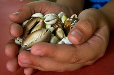 hands holding shells